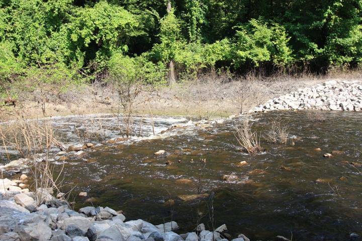 Delta National Forest A Mississippi National Forest