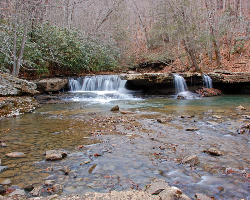Camp Creek Wv >> Camp Creek State Forest A West Virginia State Forest