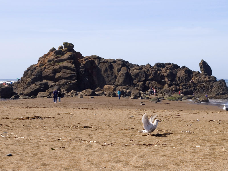 List of parks located in oregon for Fishing in lincoln city oregon