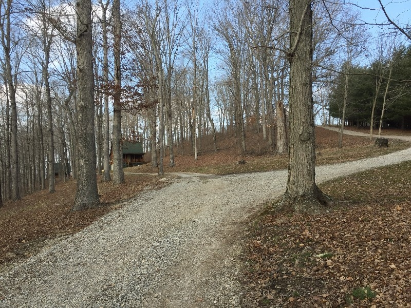 Road to Cabins - To the left is Acorn and Beechwood Cabins and to the right is Chicory and Dogwood Cabins.