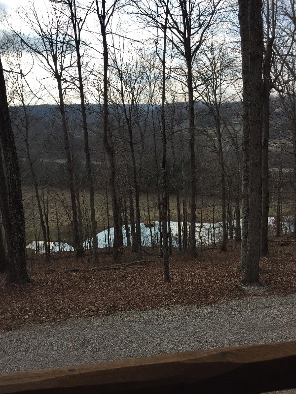 Acorn Cabin - View from front porch overlooking pond.