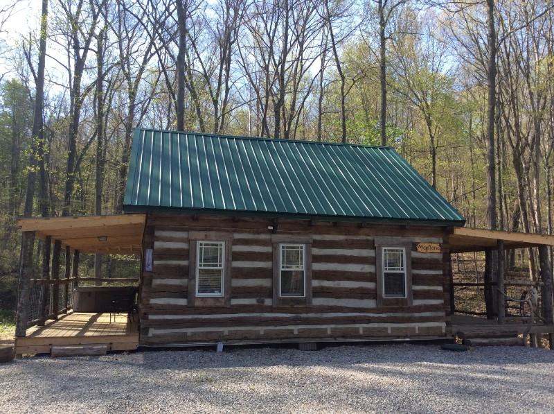 Montana Cabin