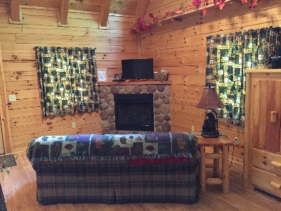Dogwood Cabin - Living room