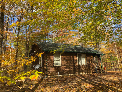 The Woods Cabin - Our coziest cabin, sleeps 2