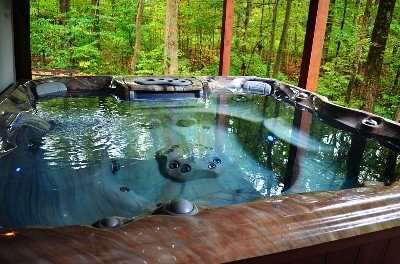 - Outside relax and unwind in our brand new high-end Sundance Hot Tub with waterfall and LED mood lighting.  Inside de-stress and detox in our Infrared Sauna.  Check out our website for more details... www.redwolffalls.com