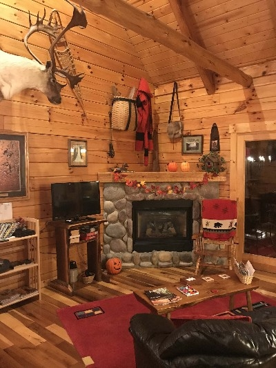 Cardinal Cabin - Our exquisitely decorated cabins are loaded with amenities, including a gas fireplace, TV, DVD player.