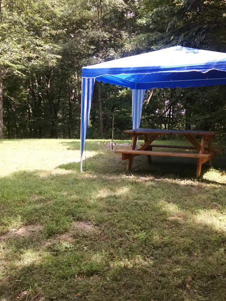 dinning canopy - camp sites include a dinning shelter canopy over the picnic table. Campsites are primitive walk-in sites.