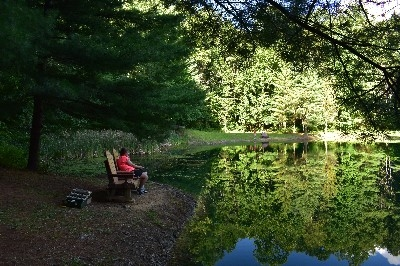 Stocked fishing pond - relax and fish on our gliding benches