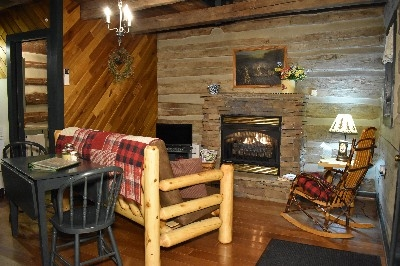 Living Room - gas log fireplace