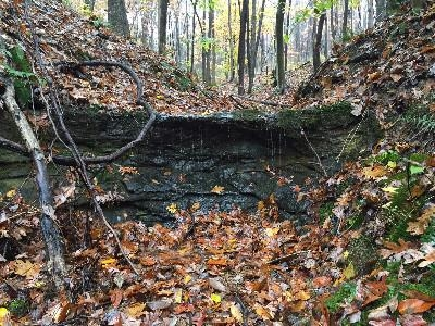 Rainy Fall Day - Enjoy gorges, creeks and seasonal waterfalls on our own private 0.5 mile hiking trail