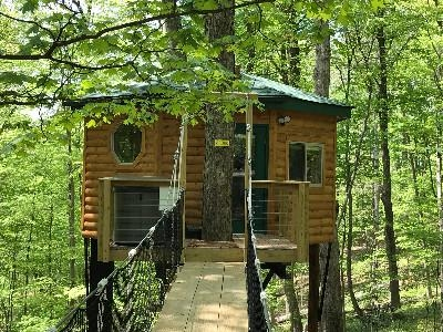 Safari Tree House - Entry with bridge