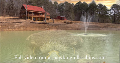 Hawking Pond Cabin - Pond view