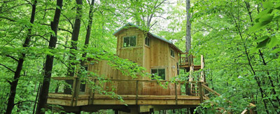 Stay in the Trees! - Re-TREE-t to the woods at Hocking Hills Treehouse Cabins   Hocking Hills Treehouse Cabins