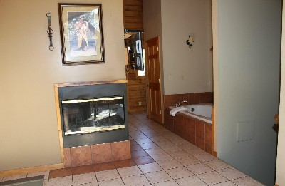 Fireplace / Jacuzzi Tub  - Three sided wood burning fireplace and jacuzzi tub!