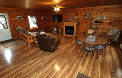 Dot Calm Living Room - Spacious with gas fireplace, large TV, satellite TV, leather recliner and queen size futon