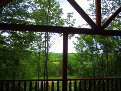 Cabin porch view - View from the wrap around deck
