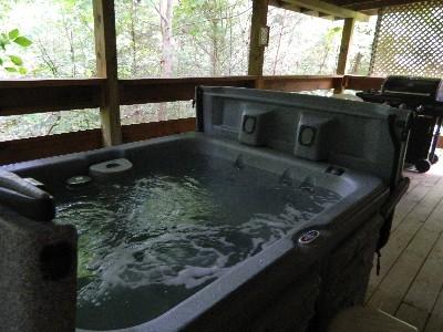 Silver Wolf - Hot tub/back porch