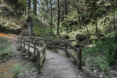 Bridge In Conkles Hollow - The trail back to the falls. It