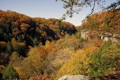 Rim Trail in Fall